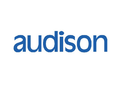 We stock and fit Audison